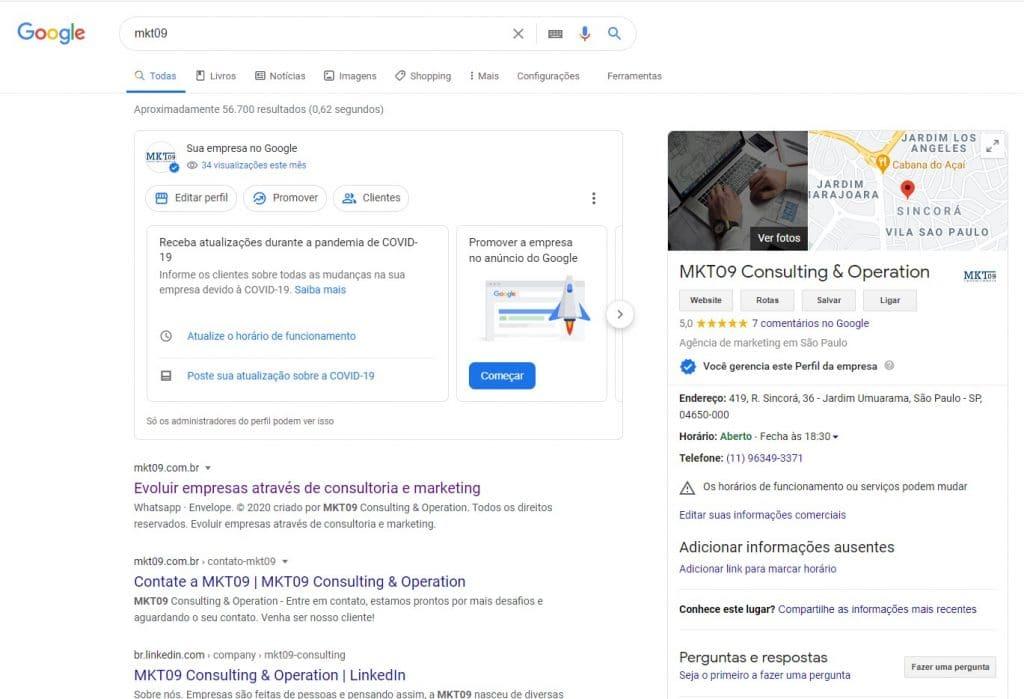 Pesquisa de site no google